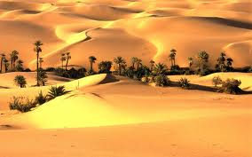 desertul thar