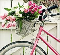 bicicleta cu lalele
